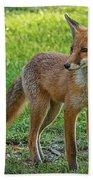 The Fox Bath Towel
