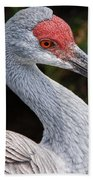 The Greater Sandhill Crane Bath Towel