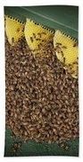 The Hive Bath Towel