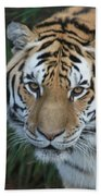 The Hunter Bath Towel