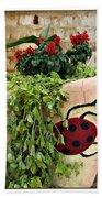 the Ladybug Bath Towel