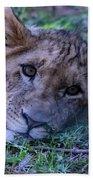 The Lion Cub Bath Towel