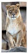 The Lioness Bath Towel