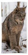 The Lynx Bath Towel