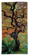 The Other Japanese Maple Tree In Autumn Bath Towel