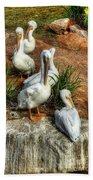 The Pelican Clan Bath Towel
