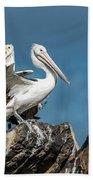 The Pelicans Bath Towel