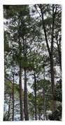The Pines Of Tallahassee Bath Towel