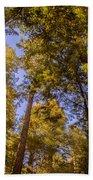 The Portola Redwood Forest Bath Towel