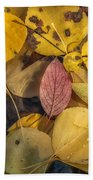 The Red Leaf Bath Towel