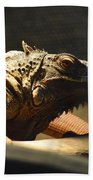 The Reptile World Hand Towel