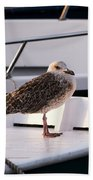 The Seagull Bath Towel
