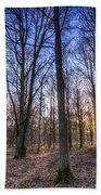 The Sun Ray Forest Bath Towel