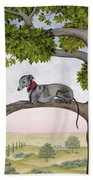 The Tree Whippet Hand Towel