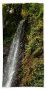 The Water Falling At The Yoro Waterfall In Gifu, Japan, November Bath Towel