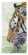 Thirsty Tiger Bath Towel