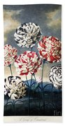 Thornton: Carnations Bath Towel