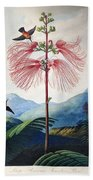 Thornton: Sensitive Plant Bath Towel