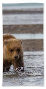 Three Bears Bath Towel