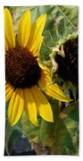 Three Beautiful Sunflower Bath Towel