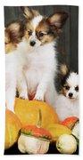 three puppy with pumpkin by Iuliia Malivanchuk Bath Towel