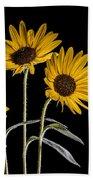 Three Sunflowers Light Painted On Black Bath Towel