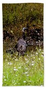 Three Turkeys Bath Towel