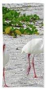 Three White Ibis Walking On The Beach Bath Towel