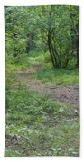 Through The Woods Hand Towel