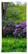 Tiergarten In Spring Bath Towel