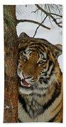 Tiger 3 Bath Towel