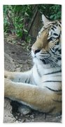 Tiger Portrait Bath Towel
