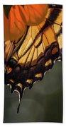 Tiger Swallowtail - 2 Hand Towel