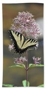 Tiger Swallowtail Butterfly On Common Milkweed 2 Bath Towel