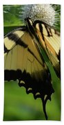 Tiger Swallowtail On Button Bush Bath Towel