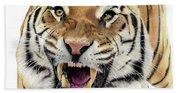 Tigers Pace Bath Towel