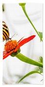 tigerwing at plus 1EV Hand Towel