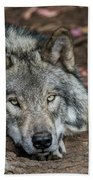 Timber Wolf Picture - Tw286 Bath Towel