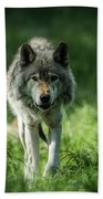 Timber Wolf Picture - Tw69 Bath Towel