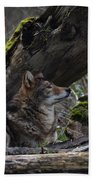 Timber Wolf Bath Towel