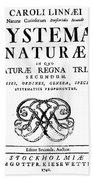 Title Page, Systema Naturae, Carl Bath Towel