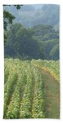 Tobacco  Field Hand Towel