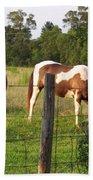 Tobiano And Bay Horses Bath Towel