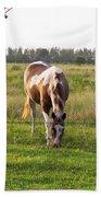 Tobiano Horse In Field Bath Towel