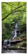 Tom Branch Falls - Gsmnp Bath Towel
