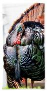 Male Turkey Bath Towel