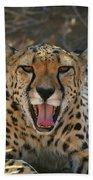 Tongue And Cheek Cheetah Hand Towel