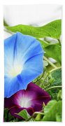 Top Of The Morning Glories Bath Towel