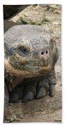 Tortoise Bath Towel