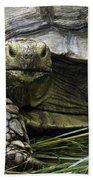 Tortoise's Stare Bath Towel